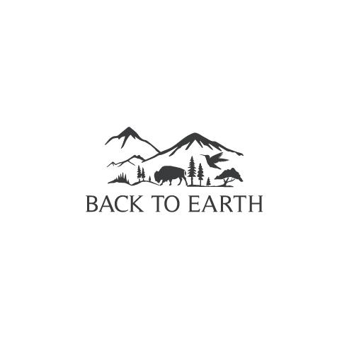 Back-to-Earth-3.jpg