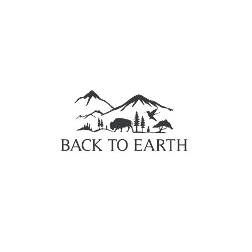 Back-to-Earth-11.jpg