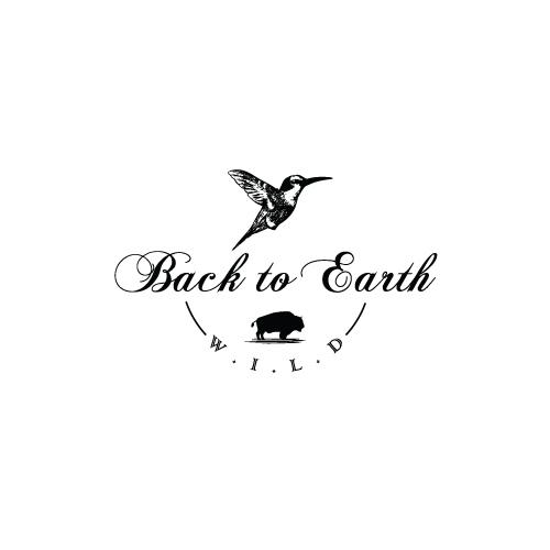 Back-to-Earth-5.jpg