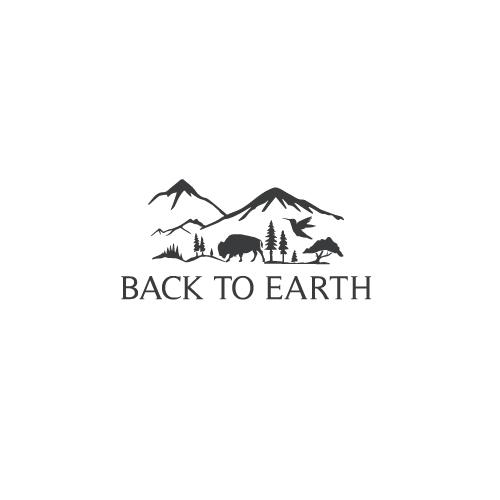 Back-to-Earth-9.jpg