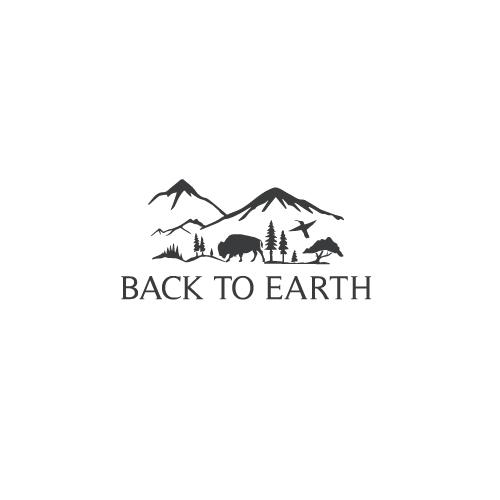 Back-to-Earth-12.jpg